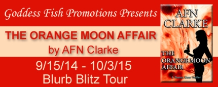 BBT The Orange Moon Affair Tour Banner copy